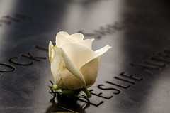 We will never forget! (lvphotos!) Tags: 911 september11 2001 worldtradecenter newyorkcity ny memorial remembering tuesday attacts people innocent painful memories american history terror tragedy