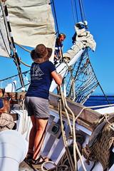 Hoisting the sails (Albert Jafar) Tags: ssirvingjohnson bow hoistingthesails sanpedroscoast brigantine sailing outdoor ship tallship