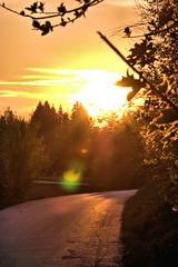 till tomorrow (camerito) Tags: strase sunset sonnenuntergang road lensflare tilltomorrow unlimited photos camerito nikon1 j4 flickr