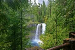 Sept 5, 2013 Koosah Falls - McKenzie River - Hwy 126 (5) (Dale Gerdes) Tags: oregon koosah falls waterfall waterfalls