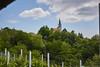IMG_7543 (Boobo_oobo) Tags: canon 6d vinski vrh zagorje vine tasting bbq hangout holliday viksa vikendica klet trsje vinograd vino