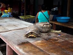Iquitos - Mercato di Belen (Andrea Giuseppe Ercole) Tags: sudamerica andreagiuseppeercole andreaercole transamazzonica perù amazzonia iquitos riodelleamazzoni rioamazonas belen mercatodibelen