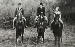 1954 Vorstenhuis (Steenvoorde Leen - 4 ml views) Tags: vorstenhuis koninklijk huis koninklijke familie monochroom 1954 pferd cheval horse paard dynasty dynastie dinastia dutch netherlands hollanda niederlande ansichtkaart card karte family