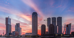 Sunset behind the large buildings of Rotterdam. (BrownyNL) Tags: kopvanzuid rotterdam landscape landschap europa city europe netherlands zuidholland stad landmarkphotographynl skyline nederland sunset