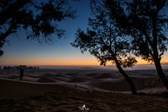 A breathtaking sunrise in the sahara (sanaturki) Tags: sunrise tree sahara desert sky blue orange colors amazing sand people landscape landscapephotography
