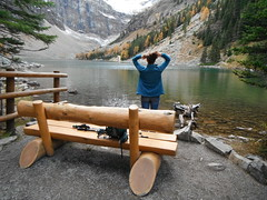 #ourcanada   #contemplation (Mr. Happy Face - Peace :)) Tags: bench canadaparks archives nature rockies art2917 hbm ourcanada150 albertabound htt h2o alpines wilderness mountain environment lakelouise banff agneslake