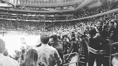 Blueshirts Victory (Listeral Mac) Tags: nyr ny newyork rangers newyorkrangers blueshirts victory win game crowd msg madisonsquaregarden nyc arena men man woman women girl boy blackandwhite ice hockey nhl skate play athlete