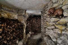 Ossuaire (flallier) Tags: carrière souterraine calcaire underground limestone quarry ossuaire catacombes catacombs os bones crânes skulls pilieràbras hagues
