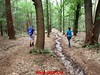 """2017-06-10         Baarn 36 Km  (91) • <a style=""""font-size:0.8em;"""" href=""""http://www.flickr.com/photos/118469228@N03/35056803622/"""" target=""""_blank"""">View on Flickr</a>"""