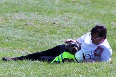 Flo Yorkie Poo Dog and Nick Woodley in Oakham Castle Grounds (@oakhamuk) Tags: flo yorkiepoo dog nickwoodley oakhamcastle grounds oakham rutland