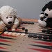 Lavendi is playing Backgammon with Blacky