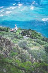 Coastline 2 (Kou Thao) Tags: animals nature wildlife hawaii scenery photograhy kokohead adventure vintage vibes tropical airplane sky sunset clouds traveler luau horse jungle