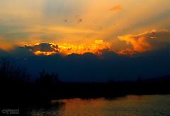 Sunset at Maharloo (2) (Mahmoud R Maheri) Tags: sunset maharloolake maharloo iran shiraz reeds pond lake sky burningsky water landscape