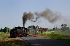 Px48-1756 bei Śnieciska by AltesLager - Die 14 Kilometer lange Schmalspurbahn von Środa nach Zaniemyśl wird nur noch im touristischen Verkehr befahren. Am 24.05.2014 wurde die Strecke im Rahmen einer Fotosonderfahrt befahren. Hier passiert der Zug mit Px48-1756 den Bahnübergang bei Śnieciska.