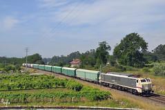 Guillarei (***REGFA***) Tags: 251014 5114 tren train mercancias mercadorias cargo comboio renfe cosmos cimpor cemento