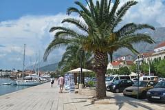 walking in Makarska :) (green_lover) Tags: makarska croatia town promenade palm trees vanishingpoint cars boats