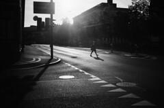 empty streets (gato-gato-gato) Tags: 35mm asph ch iso400 ilford ls600 leica leicamp leicasummiluxm35mmf14 leicasummiluxm35mmf14asph mp messsucher noritsu noritsuls600 schweiz strasse street streetphotographer streetphotography streettogs suisse summilux svizzera switzerland wetzlar zueri zuerich zurigo z¸rich analog analogphotography aspherical believeinfilm black classic film filmisnotdead filmphotography flickr gatogatogato gatogatogatoch homedeveloped manual mechanicalperfection rangefinder streetphoto streetpic tobiasgaulkech white wwwgatogatogatoch zürich schwarz weiss bw blanco negro monochrom monochrome blanc noir strase onthestreets mensch person human pedestrian fussgänger fusgänger passant zurich