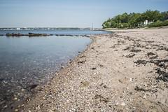 Heikendorf 2017 Strand (MD Picture) Tags: kiel city falckenstein strand wasser meer ostsee