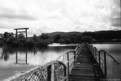 Parque Centenário da Imigração Japonesa (Celso Kuwajima) Tags: leicasummiluxm3514 epsonv800 silverfastai landscape bridge ilfordpan400 torii leicam4 outdoor analogphotography lake 20170527 bw mogidascruzes sãopaulo brazil br