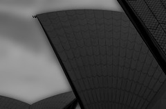 opera house sails (Greg M Rohan) Tags: abstract operahousesails sydneyoperahouse sydney monochrome blackwhite blackandwhite bw photography 2017 d7200 architecture