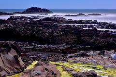 Midday Coast|Bean Hollow Beach, Northern California (miltonsun) Tags: coast beanhollowbeach northerncalifornia california rocks wave longexposure seascape bay ngc bayarea ocean shore seaside westcoast pacificocean landscape outdoor clouds sky water rollinghills sea sand beach cliff nature highway1