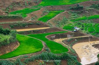 _Y2U9596.0517.Phiêng Ban.Bắc Yên.Sơn La