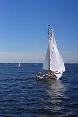 DSC05945 (Fotofreaky2013 (BUSY)) Tags: fietsboot eemlijn eemmeer zeil zeilen bunschotenspakenburg spakenburg zuidwal botter botterrace bunchoten