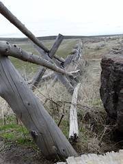 Fence 1 (fairywild) Tags: idaho desert ranch fence barbwire territory rock rockformation grass sage past life