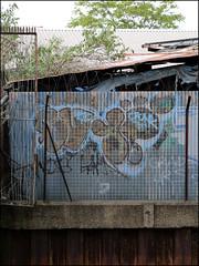 10Foot (Alex Ellison) Tags: 10foot throwup throwie eastlondon urban graffiti graff boobs
