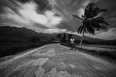 Road to Western Ghats (Well-Bred Kannan (WBK Photography)) Tags: cycle farmer farms agriculture landscape monochrome mono blackandwhite blackwhite tenkasi kannan wbk wbkphotography travel travelphotography tamron153028vcusd nikond750 india indian incredibleindia traveller tamron1530f28divcusd tirunelveli dam water sky clouds kannanmuthuraman village farmers westernghats