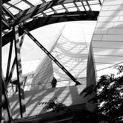 In the walls (pascalcolin1) Tags: paris fondationvuitton murs walls homme man guard gardiens arbre tree lumière light photoderue streetview urbanarte noiretblanc blackandwhite photopascalcolin square