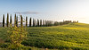 A9905704_s (AndiP66) Tags: agriturismopoggiocovili agriturismo poggio covili zypressen cypresses zypressenstrasse cypressstreet sonnenaufgang sunrise nebel dunst fog mist sonne sun morgen morning april spring frühling 2017 siena pienza sanquiricodorcia valledorcia valle dorcia toscana tuscany italien italy sony alpha sonyalpha 99markii 99ii 99m2 a99ii ilca99m2 slta99ii tamron tamronsp1530mmf28diusd tamron1530mm 1530mm f28 amount andreaspeters