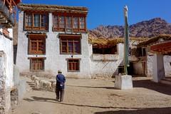 Yangtang village, India 2016 (reurinkjan) Tags: india 2016 ©janreurink himachalpradesh spiti kinaur ladakh kargil jammuandkashmir yangtangvillage tibetanethnicityབོད་རིགས།bodrigs sheepལུག་lug himalayamountains shepherdལུག་རྫི་lugrdzi herdingའཚོ་སྐྱོང་tshoskyong