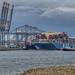 Container Ship 'MOL Triumph' - Prinses Amaliahaven - Port of Rotterdam
