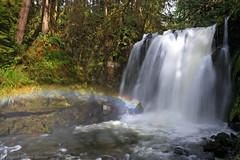 Majestic Falls, McDowell Creek County Park, Oregon (Daniel Arthur Brown) Tags: april lebanon linncounty majesticfalls mcdowellcreekcountypark or oregon pacificnorthwest countypark hike hiking landscape nature rainbow river travel waterfall waterfalls unitedstates us