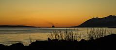 Colors of the night. (joningic) Tags: kaldbakur mountains mountain eyjafjörður sea ship colors midnight straws landscape nature northiceland iceland yellow orange