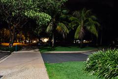 Civic Park at night (betadecay2000) Tags: civic park darwin northern territory australia australien austral australie nacht nite night nuit dark dunkel palmen palm trees sidewalk walk side reisen travel city stadt rasen lawn