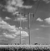 power grids.. (Karl Johan) Tags: hasselblad500cm fujineopanacros fuji neopan acros classicblackwhite 120 ishootfilm blackwhite blackandwhite powergrids longexposure planar8028 planar 8028 film analog sweden sverige malmö skåne mf mediumformat 6x6 hasselblad 500cm bwfp tetenalparanols tetenal paranol movements movement bw clouds crops field