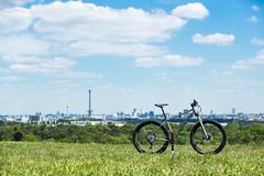 Konstructive-TANZANITE-Full-Custom-Steel-All-Mountain-Bike-Elite-XT-Supermodel-31