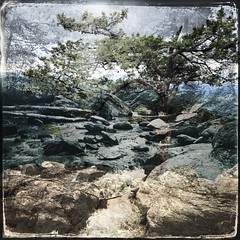 Another take on Ravens Roost. (nataliekrovetz) Tags: iphoneography dreamlike dream landscape nature tree blueridgeparkway river snapseed doubleexposure