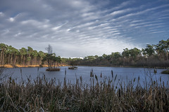 Nice clouds covering the lake (Pascal vd Wassenberg) Tags: quiet wide white wideangle water extreme red reflection river texture tripod tree trees twig tamron yellow dynamic sky skyline ice nice view distanse field light air filter simplicity outdoor outside oisterwijk oisterwijkebossenenvennen photography plant plain park pinetum awsome art abstract atmosphere sony serene statief fotografie foliage forest good green ground grass landscape landschap long lake clouds cloud cokin blue nature netherlands natuur nederland noordbrabant ngc monopod minimalism 1750