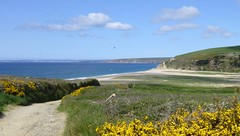 Cornwall, England (east med wanderer) Tags: england cornwall porthleven gorse track clouds