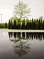 20170527 Aga Khan reflecting pool (chromewaves) Tags: olympis em10 mark ii panasonic 1232 micro four thirds toronto aga khan museum doors open
