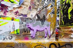 DSC_9883-65 (kytetiger) Tags: berlin scheunenviertel rosenthaler str street art pochoir pig wings