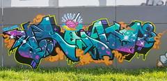 Pnoid... (colourourcity) Tags: graffiti graffitiwriters writers letters alphabetmonsters wildstyle streetartnow streetartaustralia streetart melbourne melbournegraffiti awesome colourourcity original pnoid ci mushrooms king mr burner