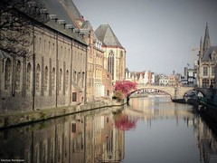 Ghent Reflection