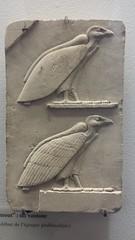 20161208_113955 (enricozanoni) Tags: ancient egypt egyptian art louvre paris statues sarcophagi musical instruments cats stele frescoes hieroglyphics