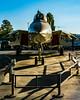 HEAD-ON WITH MUSEUM OF FLIGHT TOMCAT (AvgeekJoe) Tags: d5300 dslr f14 f14tomcat f14a f14atomcat grummanf14tomcat grummanf14atomcat museumofflight navalaviation nikon nikond5300 tomcat usnavy usn aircraft airplane aviation jetfighter plane