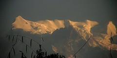 NEPAL, Himalaya - Annapurna-Massiv  von Pokhara aus gesehen, (serie) 16176/8477 (roba66) Tags: annapurna annapurnamassiv himalaya himalayagebirge gebirge reisen travel explore voyages roba66 visit urlaub nepal asien asia südasien pokhara landschaft landscape paisaje nature natur naturalezza mountain berge range mountains montana felsen rock rocks gletscher eis ice