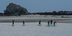 Paddlers Currumbin Rock (armct) Tags: foreshore morning sand shallows paddleboard lesson tuition rocks currumbin luminous reflection paddling creek lagoon estuary goldcoast queensland nikon d810 80400mm